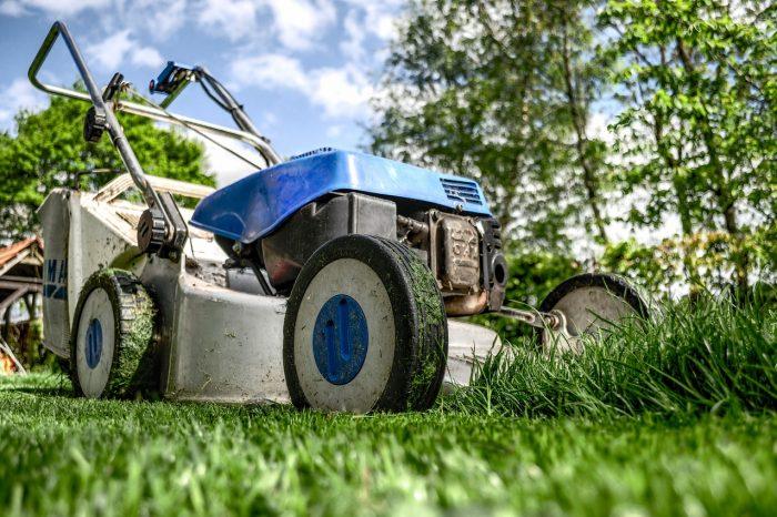 Cara Bagaimana Membersihkan Rumput Liar